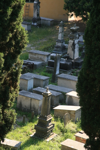 [Picture: Jewish Cemetary 1: far away]
