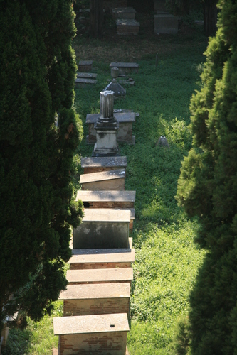 [Picture: Jewish Cemetary 2: all in a line]