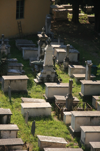 [Picture: Jewish Cemetary 10: rows]