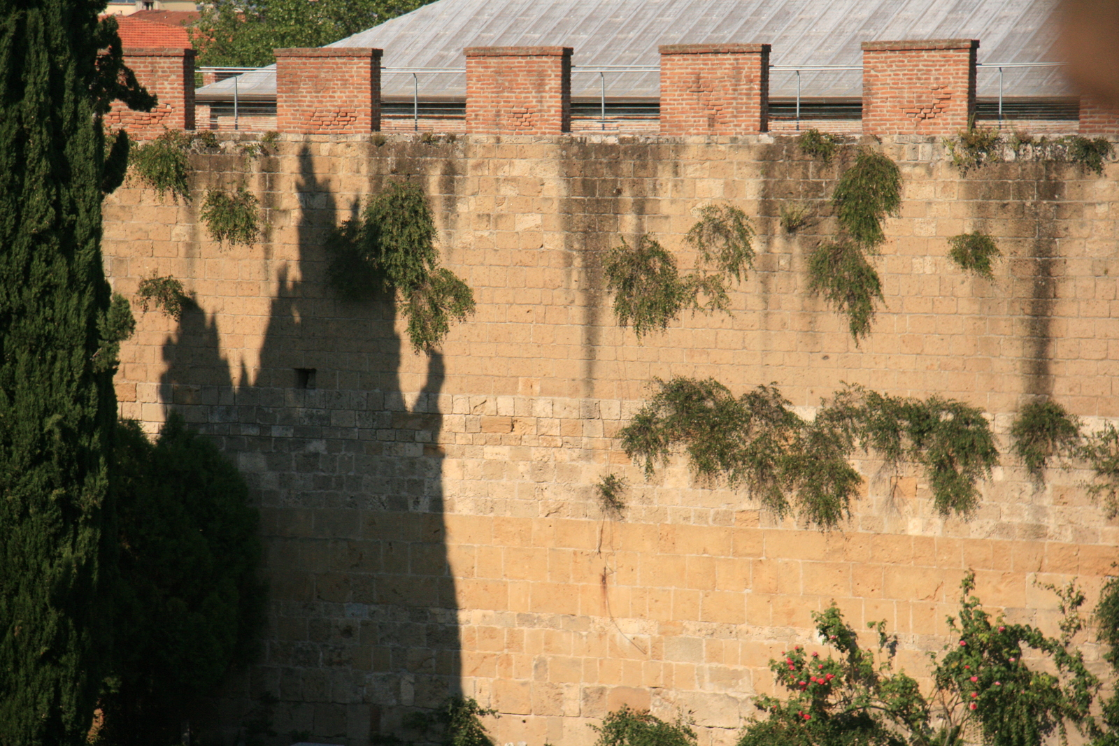 [Picture: Jewish Cemetary 19: City wall]
