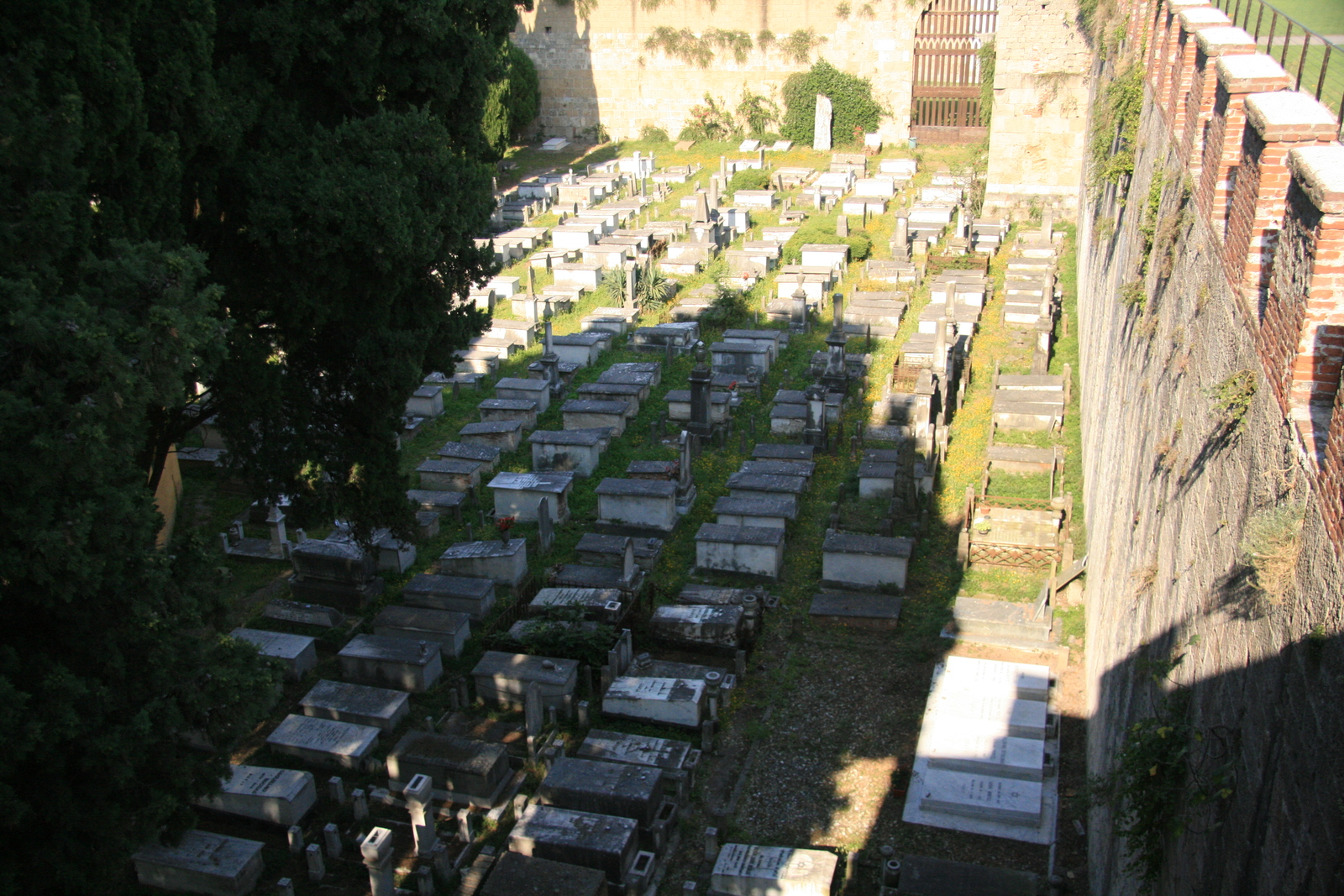 [Picture: Jewish Cemetary 22: Looking down]