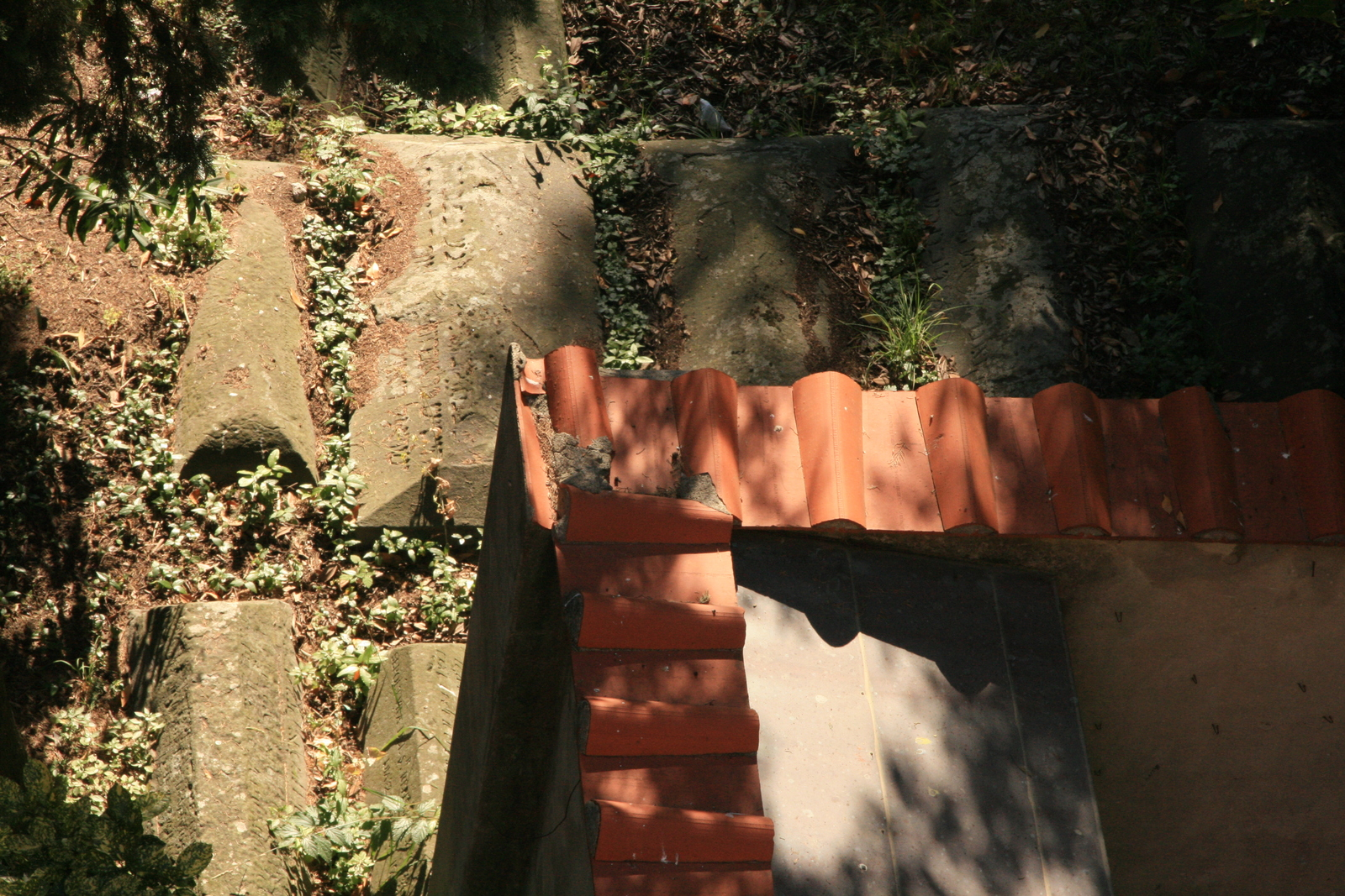 [Picture: Jewish Cemetary 30: More tombs]