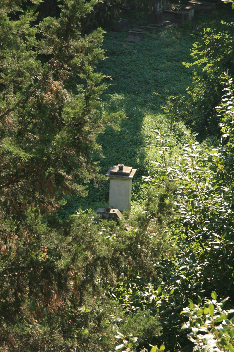[Picture: Jewish Cemetary 31: distant monument]