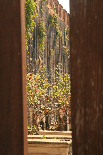 [Picture: Jewish Cemetary 35: Through the gate]