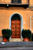 [Picture: Wooden door in arched entrance]