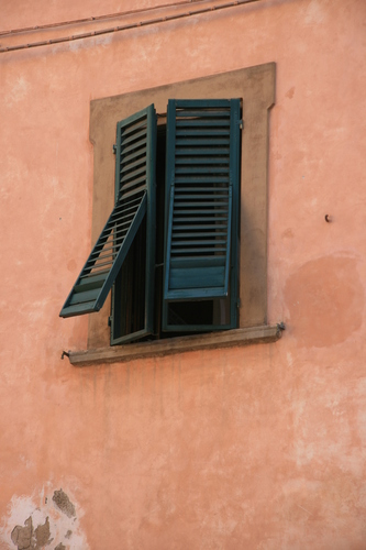 [Picture: Hinged window-shutter]