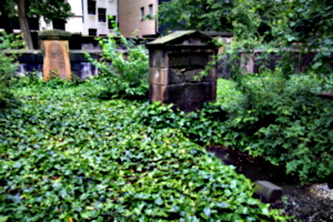 [picture: Overgrown Churchyard 1]