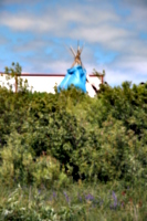 [picture: Teepee 2]