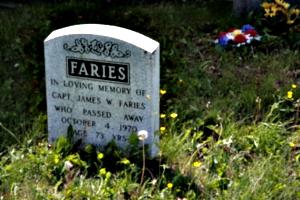[picture: Dead Faries]