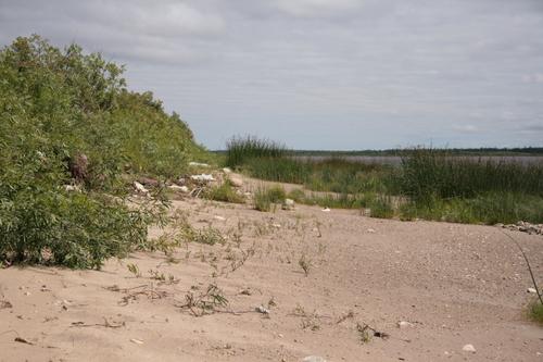[Picture: Sandy beach 2]