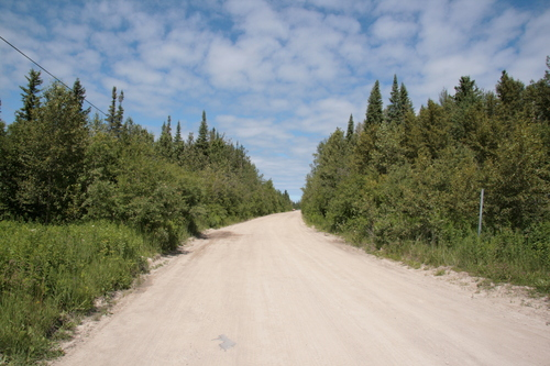 [Picture: Dirt Road]