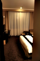 [picture: Hotel Room 1]
