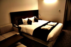 [picture: Hotel Room 2]