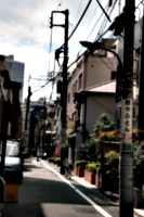 [picture: Street]