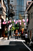 [picture: Lanterns and Mikoshi 1]