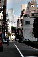 [Picture: Pink lanterns]