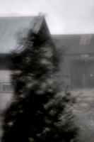 [picture: Moving tree, crouching building [edited]]