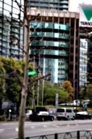 [picture: Scrawny tree, curved skyscraper]