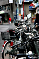 [picture: Bicycles 2]