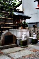 [picture: Japanese temple 4]
