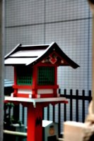 [picture: Japanese temple 9]