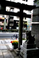 [picture: Japanese temple 31]