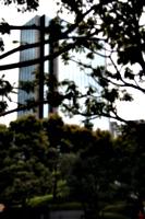 [picture: Skyscraper]