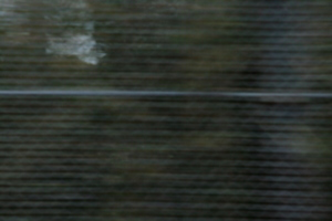 [picture: blurred fence texture]
