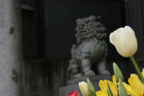 [Picture: Japanese temple 37]