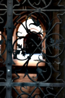 [picture: Cloister 1]