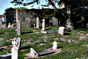 [picture: Graveyard 3]