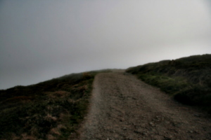 [picture: Path through the mist 5]