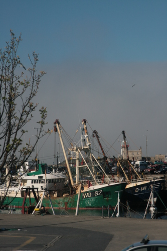 [Picture: Boats in the harbour]