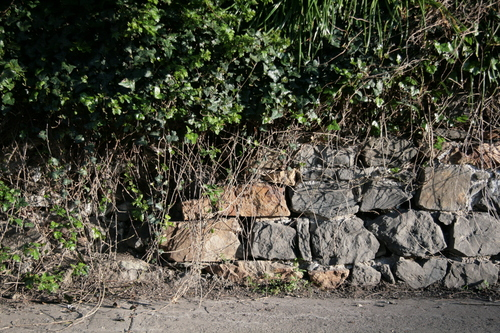 [Picture: Stone wall 3]