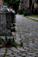 [picture: Bollards and Cobbles 3]