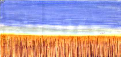 [picture: Wheat-field]
